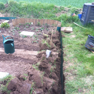 Umgegrabenes Nutzbeet mit Rasenkante