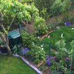 Das Gras in Nachbars Garten