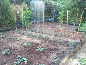 Eine natürliche Rankhilfe verleiht dem Garten gleich auch flair