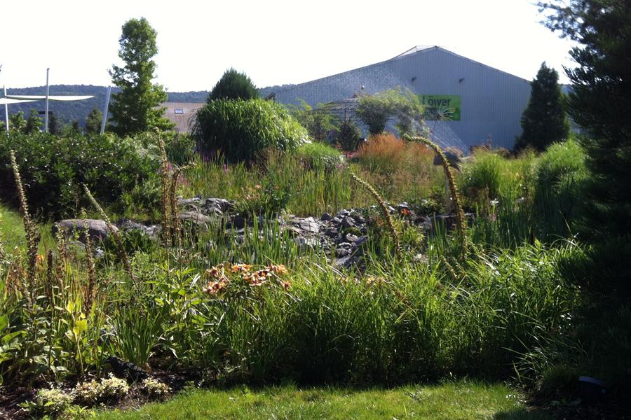 Teich in der Gartengestaltung