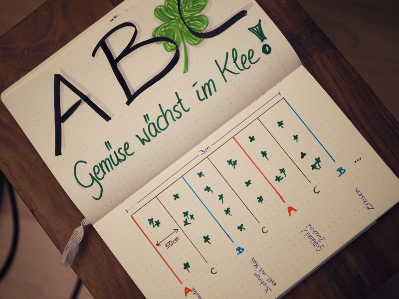 Das ABC-Modell von Gertrud Franck zu Mischkultur in Reihen